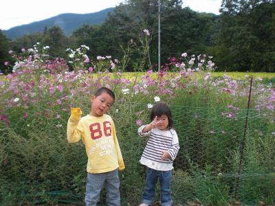 2010.09.26 栗拾い 030