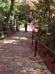 2010.11.24 三滝寺 017