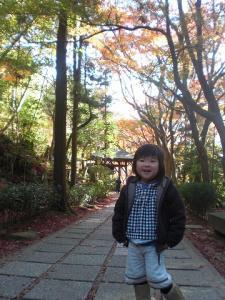 2010.11.24 三滝寺 006