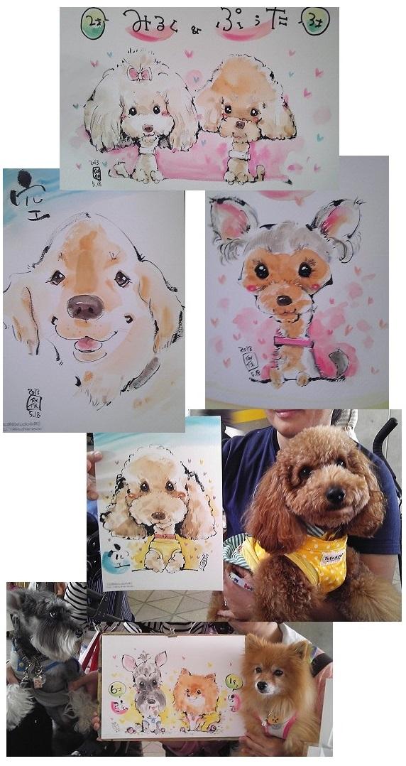 572px介助犬フェスタ2013