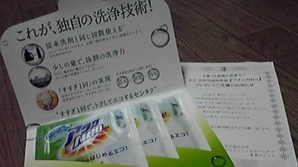 P1000087.jpg