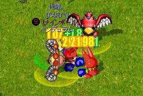 トマト対決
