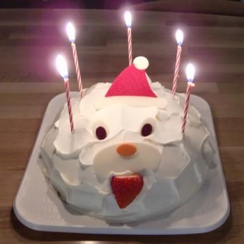 クランベリーのクリスマスケーキ