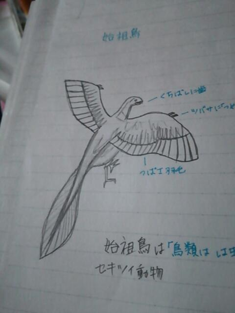 moblog_3c4c59de.jpg