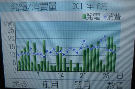 月間グラフ。