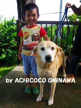 aakuwanomis10.jpg