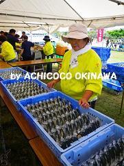 cacosumkoko211.jpg