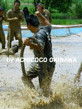 ccctannbofessa32.jpg