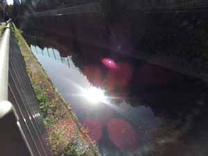 20121205_095217.jpg
