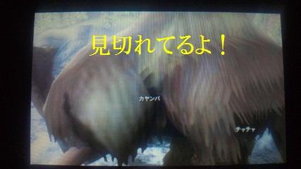 NEC_0071.jpg