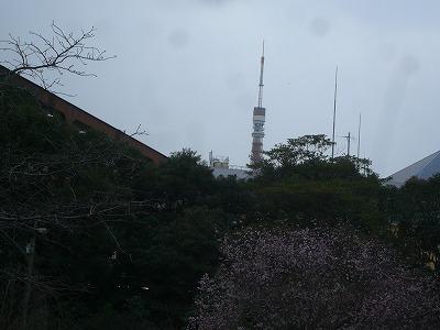 s-P1320096.jpg