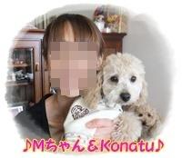 M_20120214171309.jpg