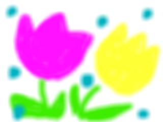 snap_nnnnnnamihei_201222123743.jpg