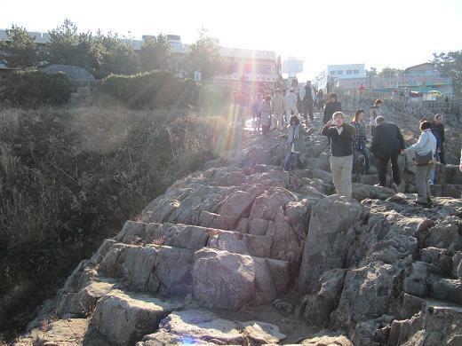 2010112117.jpg
