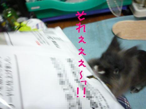 のびおまけ それええええ~!!