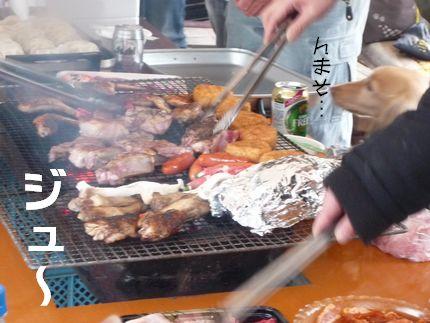 BBQが、お気に召さない 肉肉肉~♪