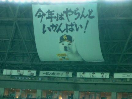 福岡ドーム 何度見ても威圧的なメッセージばい。。(怖)