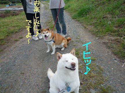 kるま大好き あじ仕事しろ(爆