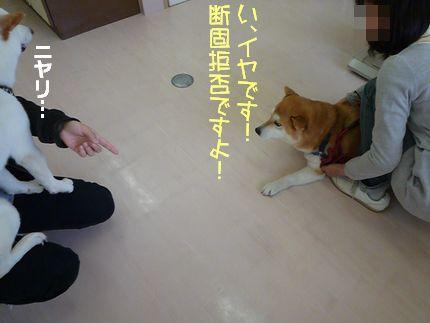 bょういんお注射ぐーふー ダンコぐーふー!!