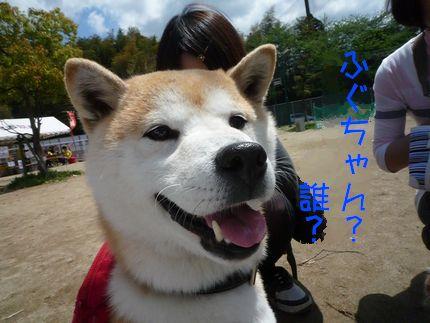 OWP2 りくちゃんも、やっぱり似てるよ~!