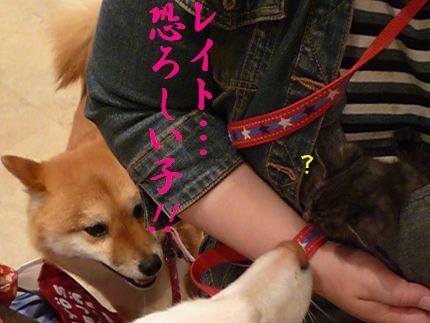 OWマリノアp2 あゆみさん?