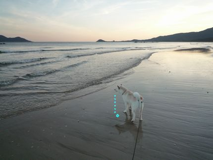 やっとロング 朝の海見て何思う??
