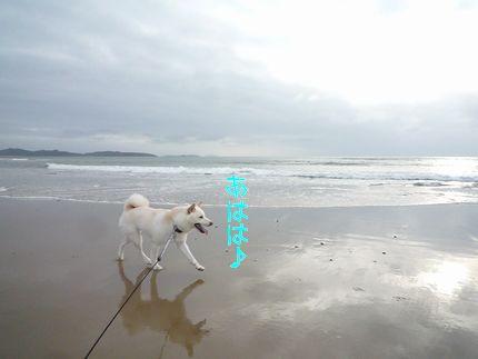 海に寄り道 あははのは