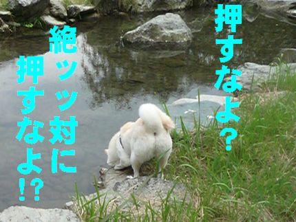 OW後川 絶対に~押せ!!