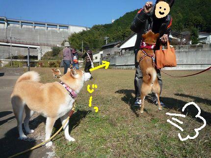 kww9柴1ラブ びよよ~ん!!①