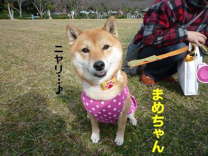 OW@恋の浦 ニヤっとまめちゃん