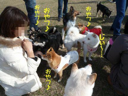 OW@恋の浦ラン おやつおやつ~
