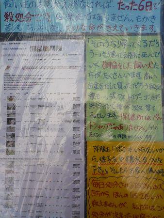 20101212メイトム ぱねる2
