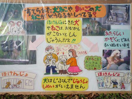 20101212メイトム ぱねる