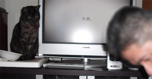 CIMG4614.jpg