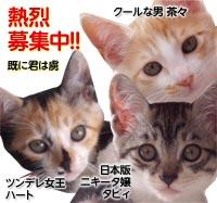 banner_sakura_20130811171549882.jpg