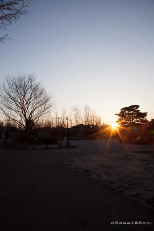 20130211-_MG_6046.jpg
