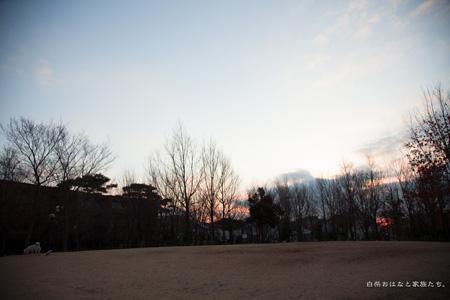 20130212-_MG_6052.jpg