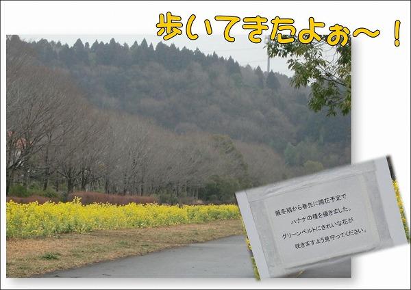 20100201101.jpg