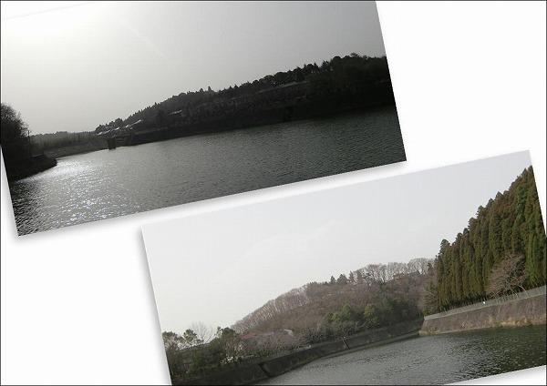 2010032109.jpg