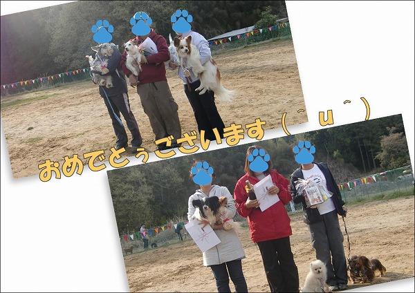 2010041854.jpg