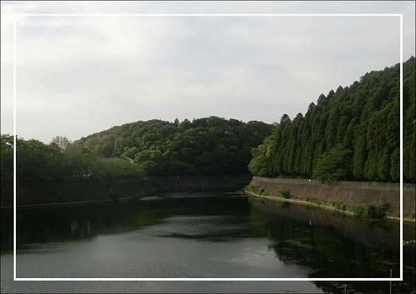 2010050722.jpg