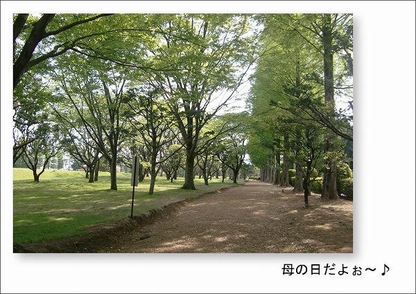 2010050801.jpg