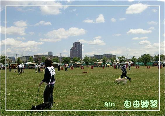 2010051505A.jpg