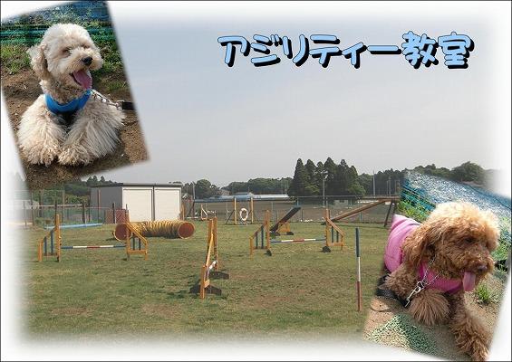 2010052201A.jpg