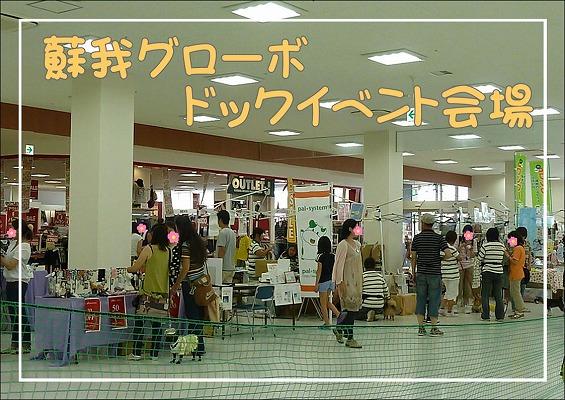 201008081406.jpg
