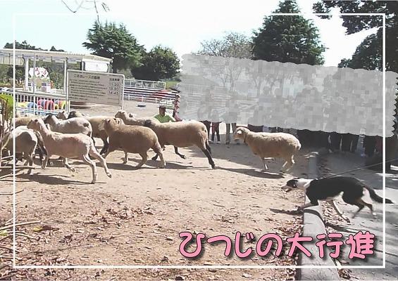 2010091119.jpg