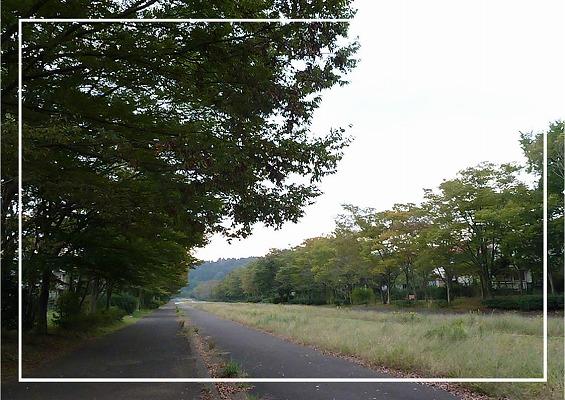 2010102401.jpg