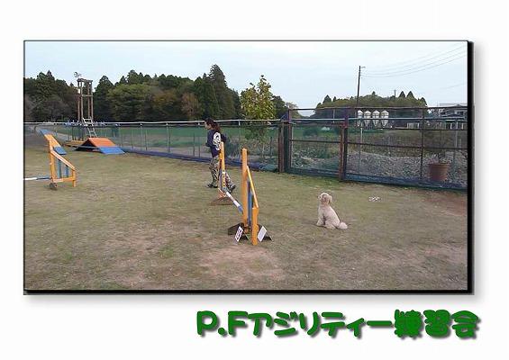 2010111301.jpg