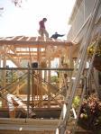 工事林屋根