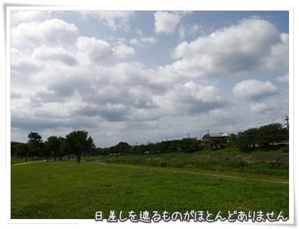 002-20110811.jpg